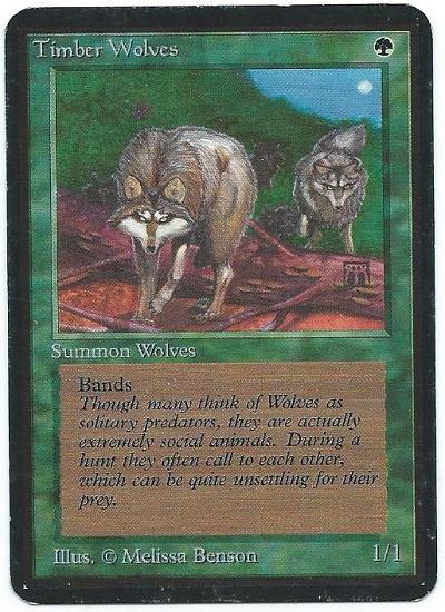 Alpha Timber Wolves