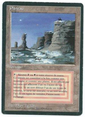 FBB Plateau (French) #1