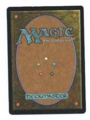 Magic MTG Promo Guru Swamp back
