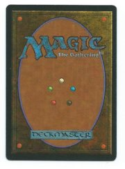 Magic MTG FBB Shivan Dragon German back