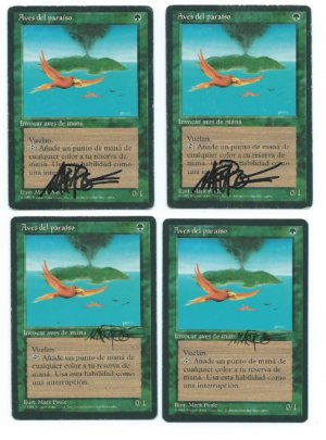 Magic MTG 4x FBB Birds of Paradise signed spanish playset front