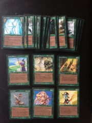 Magic MTG FBB Revised Italian Complete set green