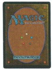 Magic MTG FBB Scrubland French back #2