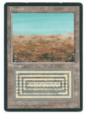 Magic MTG FBB Scrubland French front #2