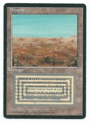 Magic MTG FBB Scrubland French front