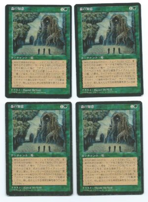FBB Japanese Sylvan Library front