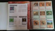 Salvat Hachette Magic MTG cards red