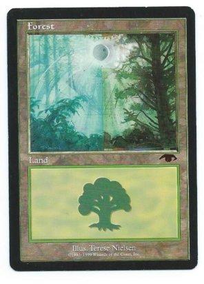 Guru Forest front