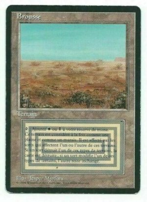 Magic MTG FBB Scrubland #1 French front