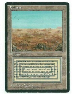 Magic MTG FBB Scrubland #3 French front