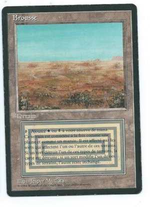 Magic MTG FBB Scrubland French INKED front