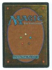 Magic MTG FBB Scrubland French back
