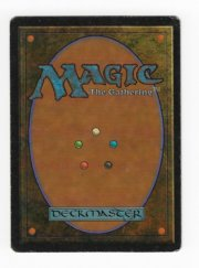 Magic MTG FBB Scrubland Italian #2 back